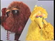 Big Bird and Snuffy calling each other