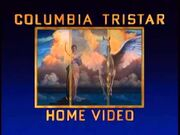 CT Home Video 1993 Logo