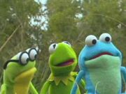 Kermit's Swamp Years Preview
