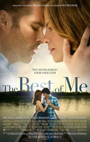 2014 - The Best of Me Movie Poster