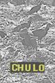 Thumbnail for version as of 00:09, May 17, 2009