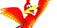 Kazooie the Breegull (character)
