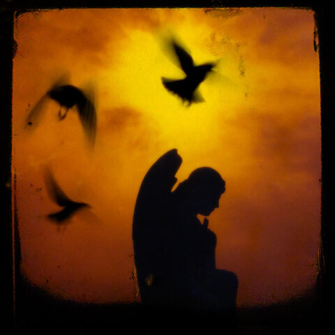 File:Gothic-silhouette-gothicolors-with-crows.jpg