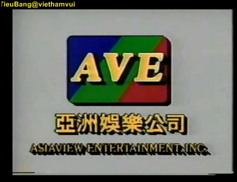 File:Asiaview Entertainment, Inc. Logo (1992-1995).png