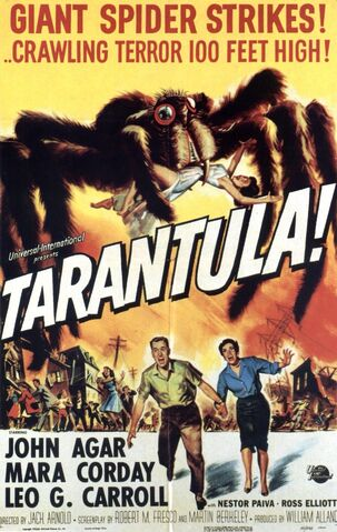 File:1955 - Tarantula Movie Poster.jpeg