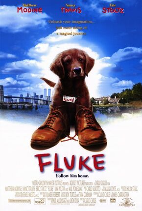 1995 - Fluke
