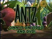 Antz VHS Preview