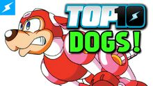 Top10Dogs