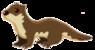 Otter-0