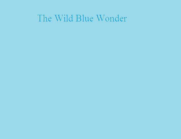 File:The Wild Blue Wonder.png