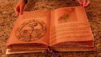 Pagan Scrapbook Supply - Cassie Blake's Secret Circle Book of Shadows