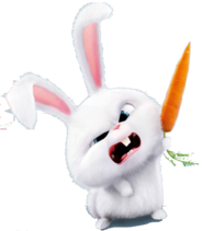 Snowball's carrot