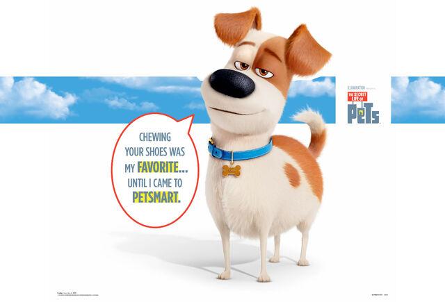 File:PetSmart-Secret-Life-of-Pets.Max-In-store.jpg