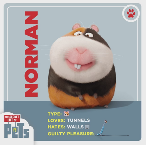File:Norman card.png
