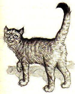 Animals-in-Septimus-Heap-septimus-heap-serie-8854077-269-334