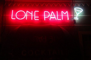 The Lone Palm