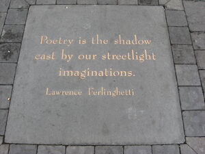 Poetry is the shadow
