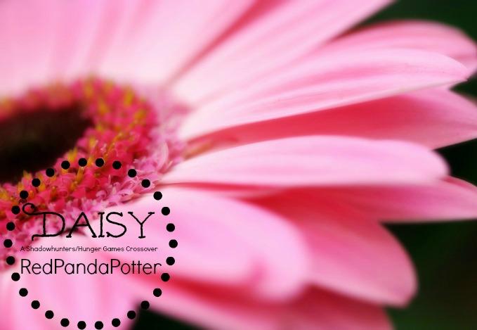 DaisyCover
