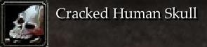 Cracked Human Skull