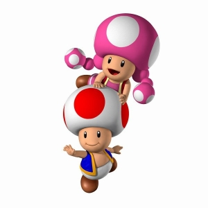 File:Toad and Toadette.png