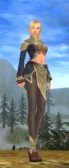 Elf Female Dendron Armor