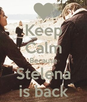Keep Calm Because Stelena is Back Fanart