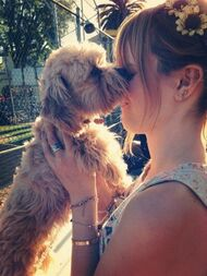 Bella-thorne-being-kissed-by-Kingston-puppy