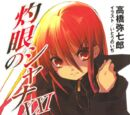 Shakugan no Shana Light Novel Volume 21