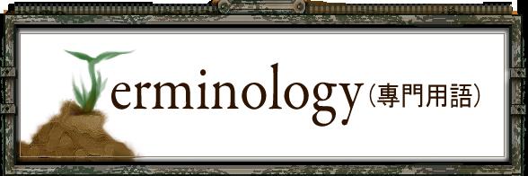 File:Terminology frame.png