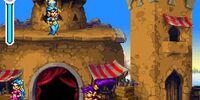 Overworld (Shantae: Risky's Revenge)