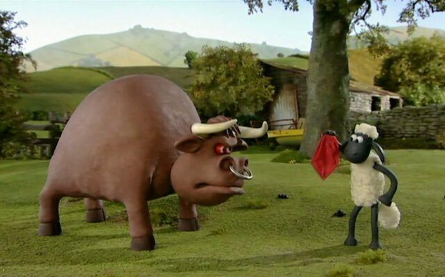 File:Bull seeing red1.jpg