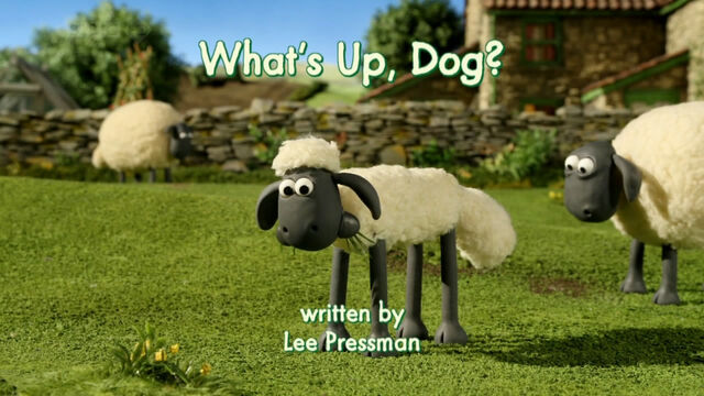 File:What's Up, Dog title card.jpg