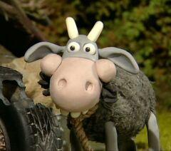 mower mouth character shaun the sheep wiki fandom