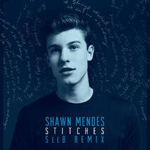 Stitches-Remix