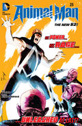 Animal Man Vol 2-25 Cover-1