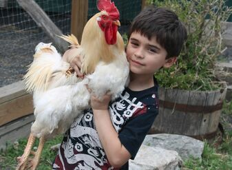 Current jonah holding chicken