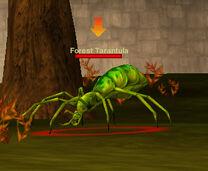 Forest tarantua arrow targetted
