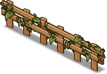 Fence of Ivy -3-