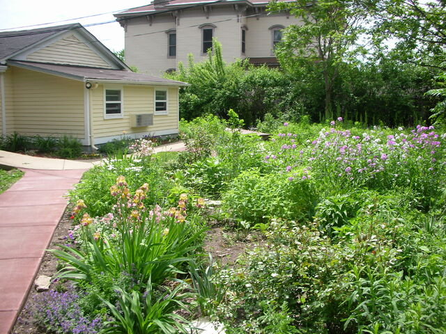 File:Waukegan campus Admissions exterior rear meadow.jpg
