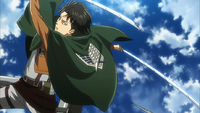 Levi in action