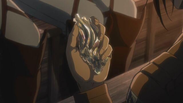 File:A fragment of hardened Female Titan skin.jpg