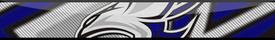 Steelhawks teambar