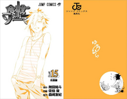 Volume 15 Book Cover