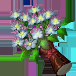 File:Remedies Elderflower.png