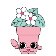 1078-Peta-Plant-Rarity-Exclusive