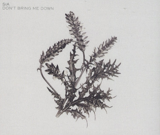 File:Don't Bring Me Down cover alt.png