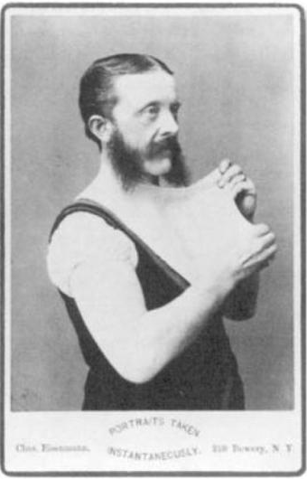 Alexander Wehrle Wikipedia