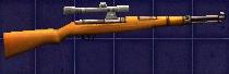 Rifle 33-40 Scoped