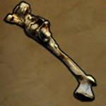 File:Malformed Bone of Scraper.png