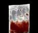 Sacca di Sangue